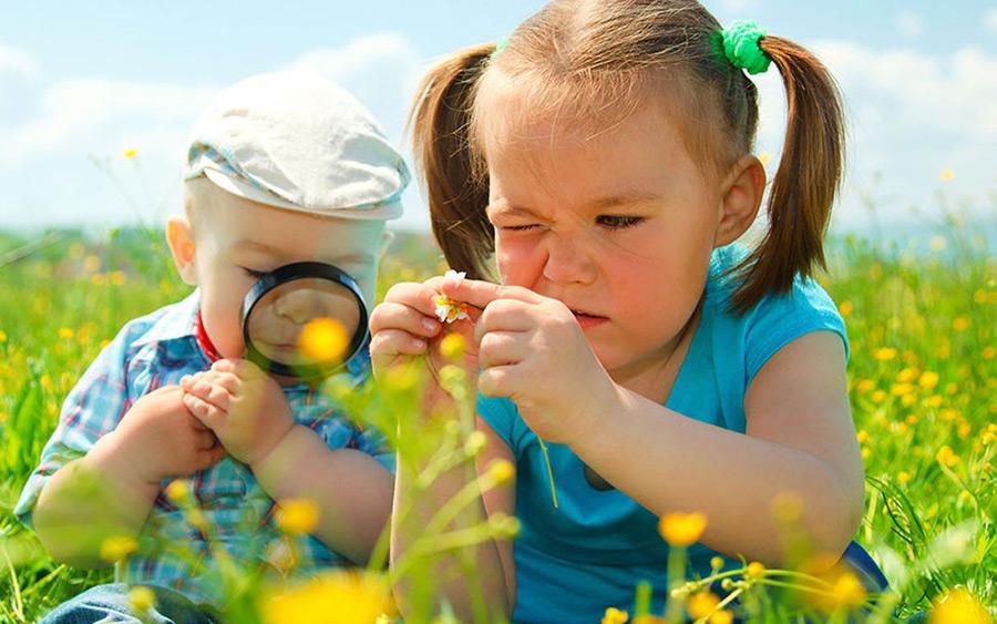 Educação Ambiental - ESSA - Estratégia Socioambiental