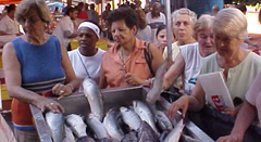 Feira do Peixe - Ministério da Pesca e Aquicultura (MPA)ESSA - Estratégia Socioambiental