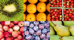 Fruticultura - ComercializaçãoESSA - Estratégia Socioambiental