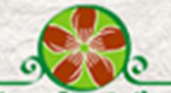 Inclusão Sustentável ParticipativaESSA - Estratégia Socioambiental