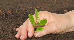 Programa de Educação Ambiental (PEA)ESSA - Estratégia Socioambiental